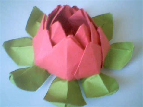 imagenes de flores origami origami rosa flower lotus parte 5 taringa