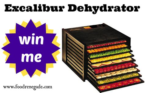 exciting dehydrator cookbook 25 dehydrator recipes books winner excalibur dehydrator 250 value food renegade