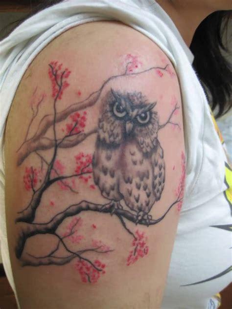 tattoo owl tree 45 simple owl tree tattoos golfian com