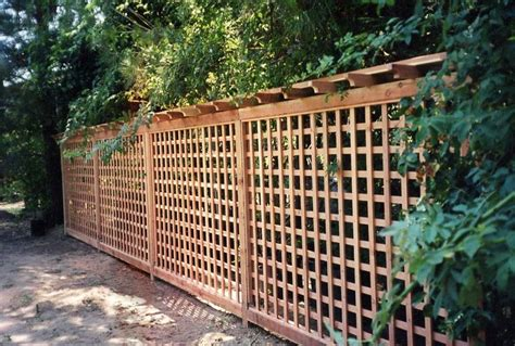 Cheap Fence Trellis Best 25 Wood Fence Gates Ideas On Fence Gate