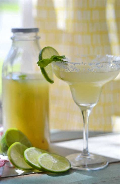Handmade Margarita - margarita mix recipe margarita mixer