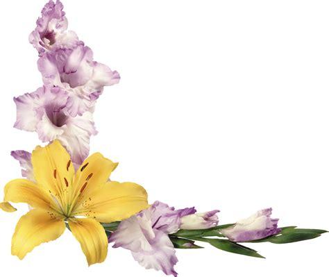 imagenes en png de flores marcos gratis para fotos flores png renders de flores