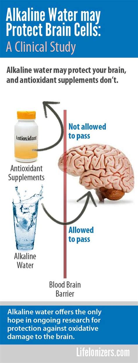 Alzheimer Detox by How To Detox The To Prevent Alzheimers Detox Autos Post