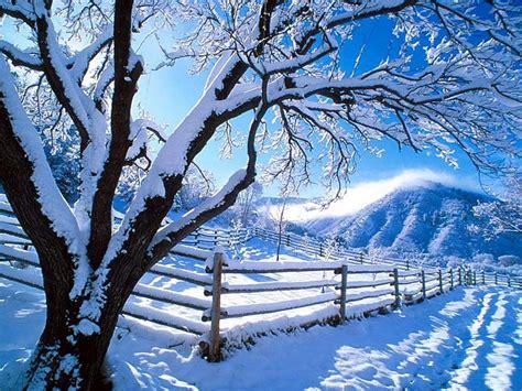 photos of snow winter