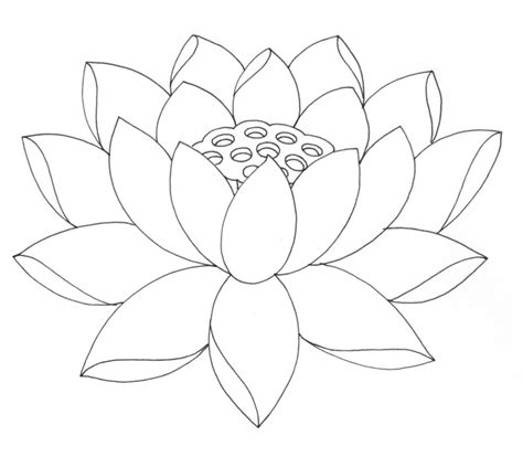 flower drawing templates free printable lotus coloring pages for