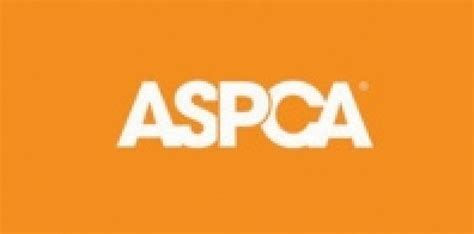aspca research shows americans overwhelmingly support