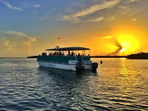 charter boat from fort myers to key west sunset dolphin wildlife cruise adventures in paradise