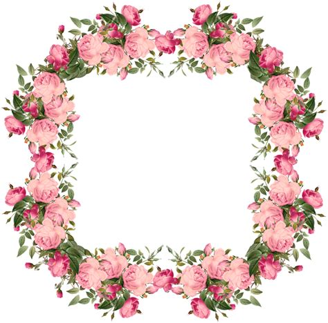 rose pennock floral page 2 pink rose clipart rose frame pencil and in color pink