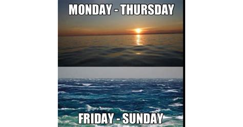 Florida Rain Meme - 12 of the greatest fishing memes of all time