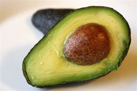 Interior With Plants Free Picture Avocado Fruit Half Slicee Kernel Seed