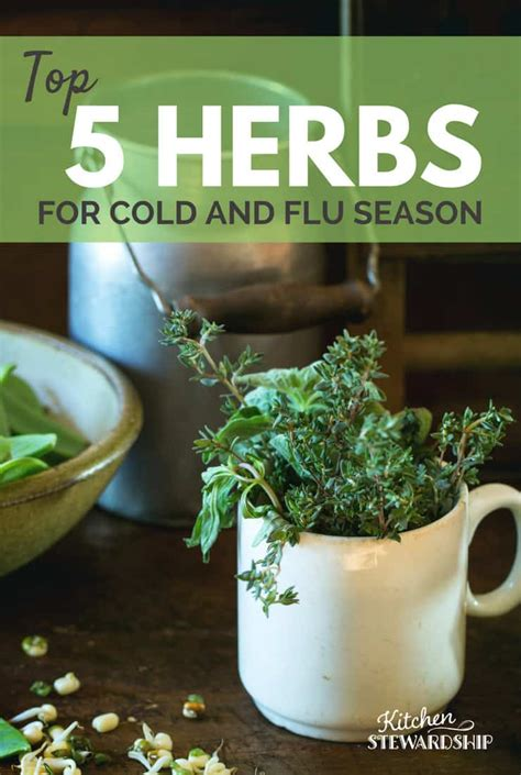 i want to know all natural herbs and vitamin that inhibit 5ar top 5 herbs for cold and flu season
