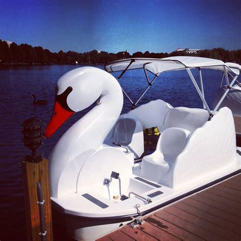 swan boats orlando fl swan boats lake eola orlando fl florida love