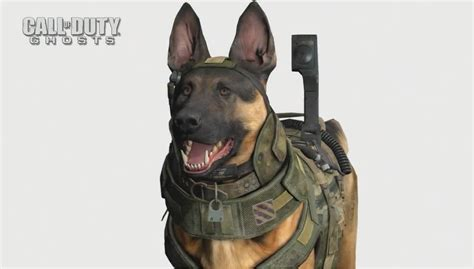 call puppy call of duty ghosts compares graphical improvements between modern warfare 3
