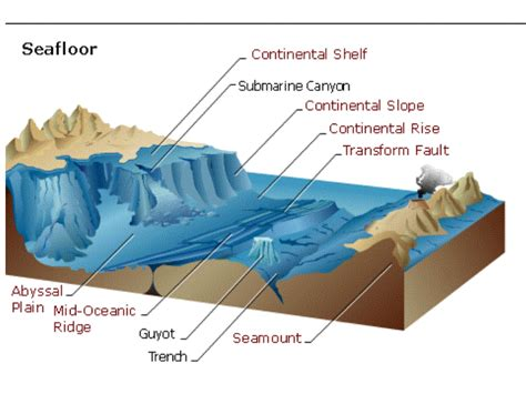 Which Describes The Composition Of The Floor by Floor Features Diagram