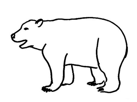 coloring page of polar bear bear coloring pages