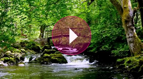 marlisse cepeda this soothing video has lulled millions of people to sleep