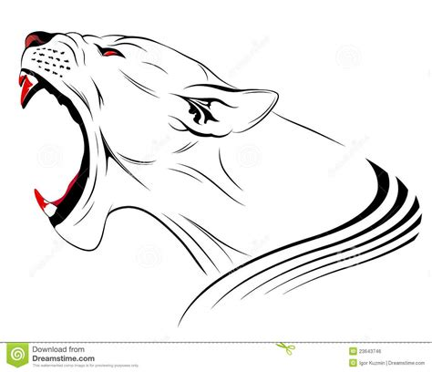 vector lion royalty free stock image image 23643746