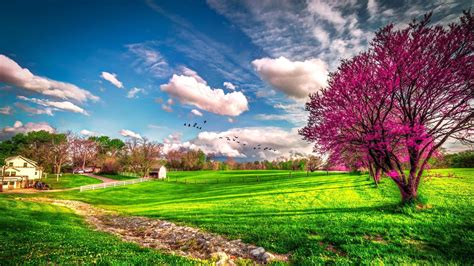 wallpaper desktop spring landscape beautiful spring nature spring wallpapers