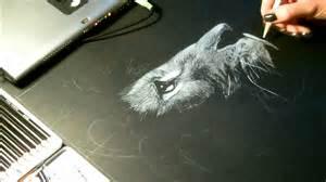 Speed drawing dessin quot lion quot crayon blanc sur fond noir youtube