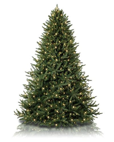 images different types of christmas trees different types of artificial trees to brighten up your office treetopia