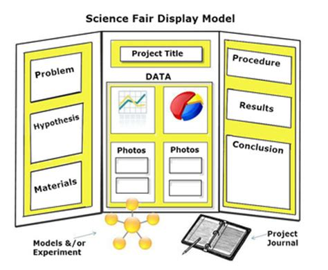 video display layout reminder of science fair display board layout content