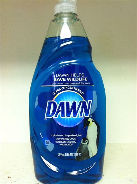 themes house made of dawn rantin ravin 20 uses for original blue dawn liquid
