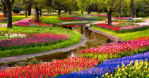 World Beautiful Flowers Garden 13 Of The Most Beautifully Designed Flower Gardens In The World