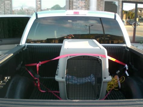 truck bed dog crate dog cage for bed of truck ford f150 forum community