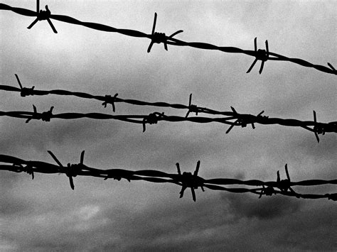 barbed wire background www pixshark images
