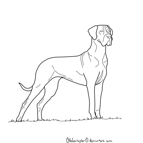 coloring book how great great dane coloring pages coloring home