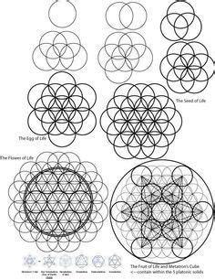 Top 13 Ideias de Cubo Metatron em 2019   Geometria sagrada