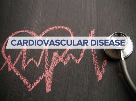 weight management for cardiovascular health cardiovascular disease shakthi health wellness