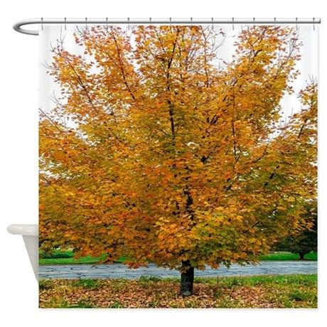 autumn leaves shower curtain autumn leaves sugar maple tree shower curtain by
