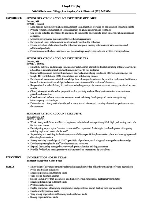 senior strategic account executive resume sles velvet