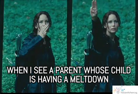Hunger Game Memes - good for her not for me some thoughts on parent shame