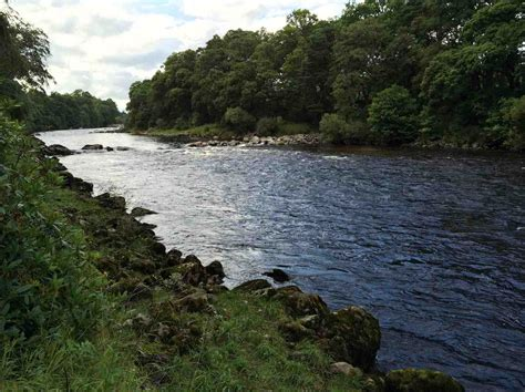 the lower river river dee summer 2015 fishing holiday package