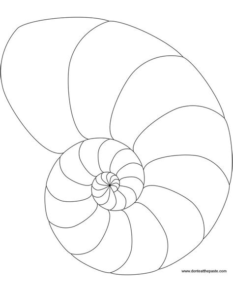 printable pictures of seashells free printable coloring pages for