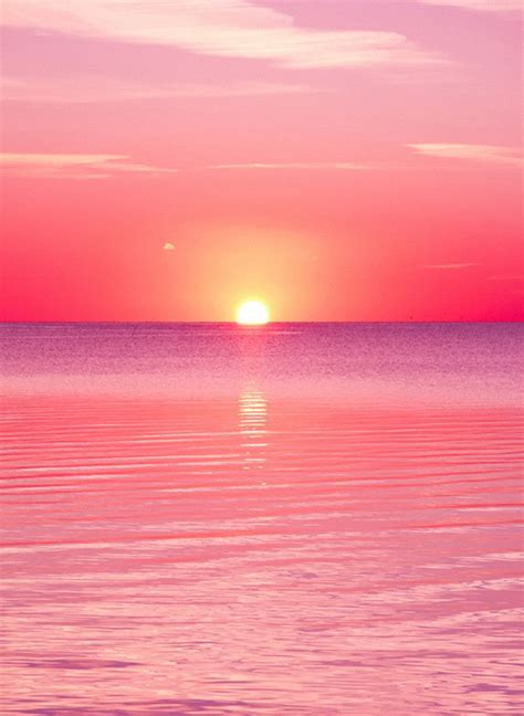 wallpaper summer pink 1544 pink sunset pink sunset sunset and wallpaper