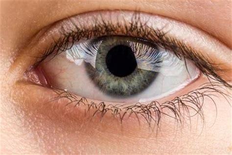 imagenes de ojos verdes y azules image gallery ojosazules