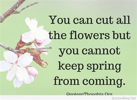awesome spring wallpaper quotes  sayings
