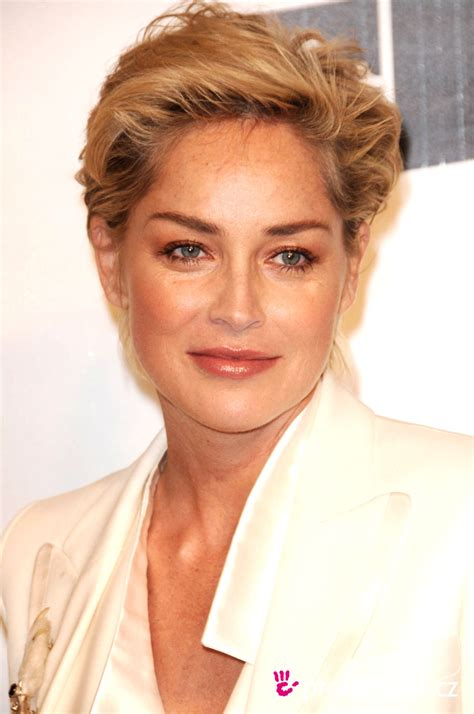 sharon stone most recent hairstyle sharon stone hairstyle easyhairstyler