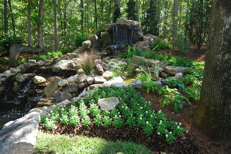 landscaping landscaping ideas in