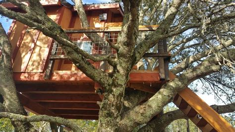 treehouse for backyard backyard treehouse for tree houses for sale