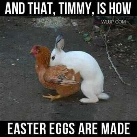 where easter eggs come from the s pictures