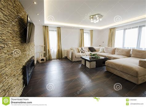 saloni con camino interno moderno di un salone con il camino e la tv