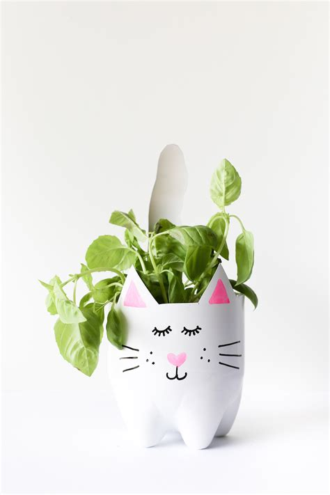 How To Make Planter by Diy Soda Bottle Cat Planters Salty Canary