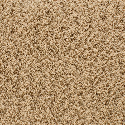 shop stainmaster active family dorchester brown frieze indoor carpet at lowes com