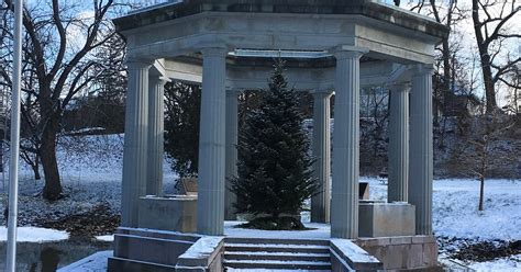 7 cherry tree saratoga springs ny tangled roots and trees honor roll congress park saratoga springs new york