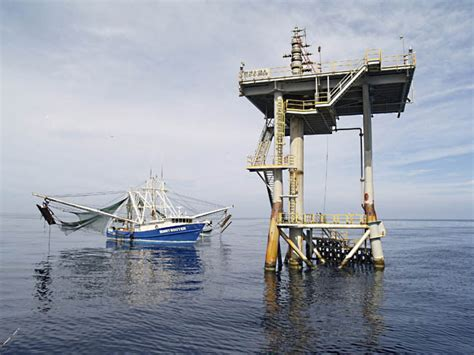 party boat fishing rigs gulf coast fisherman party boat fishing blue collar