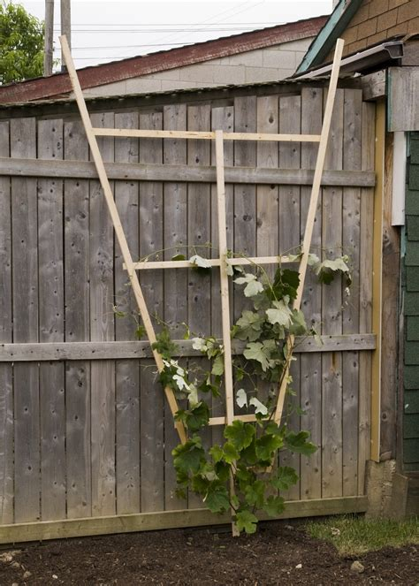 wooden trellis one canadian home how to build a wooden trellis